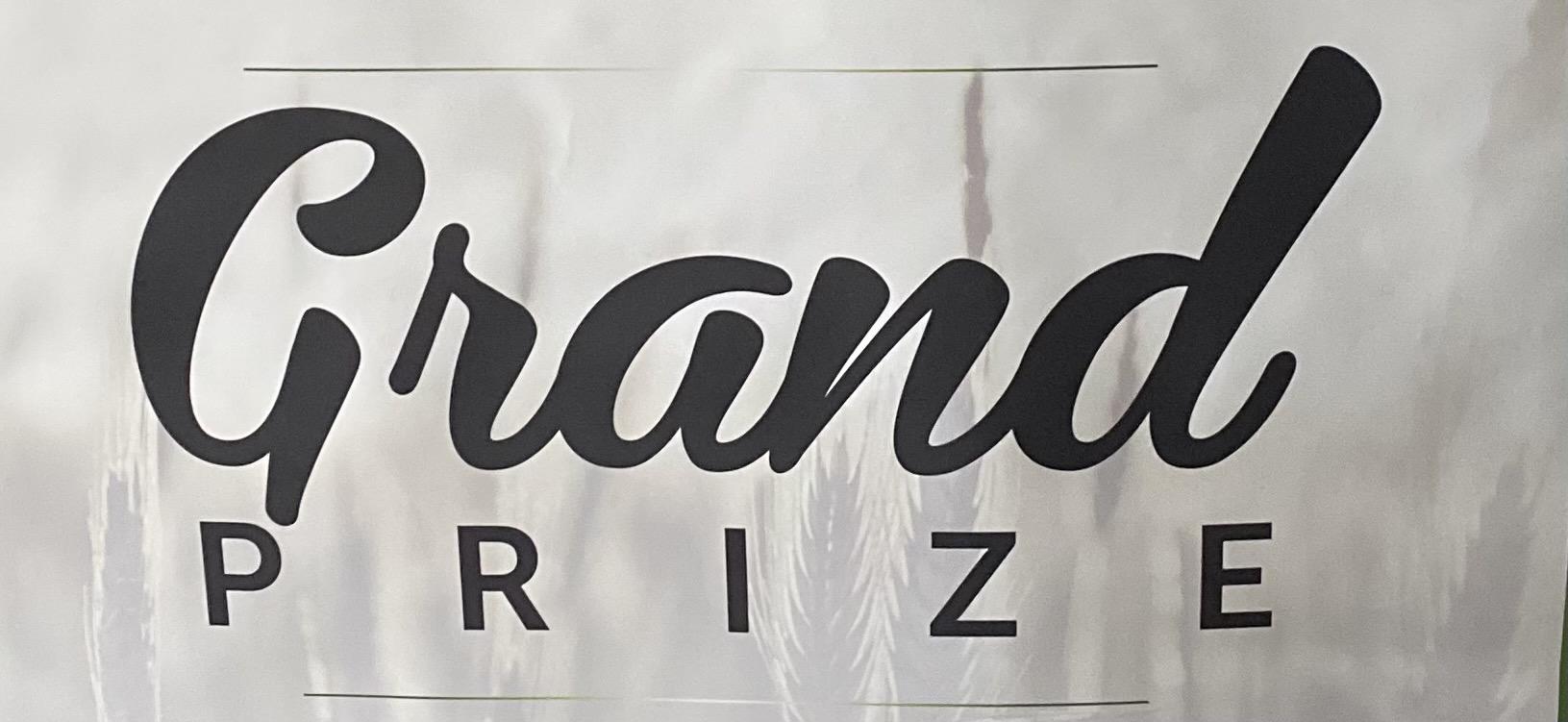Innovation Showcase Grand Prize Champion Icon