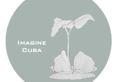 ict-logo-grey-teal