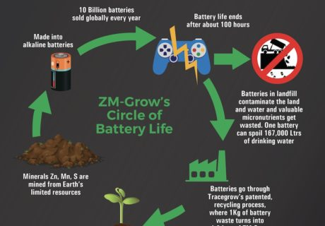 ZM-Grow-Life-cycle-Aberhart-Ag